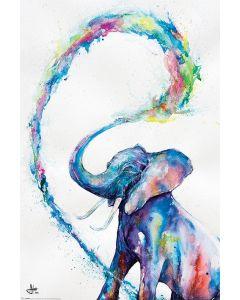 Marc Allante Poster Elephant 61x91.5cm