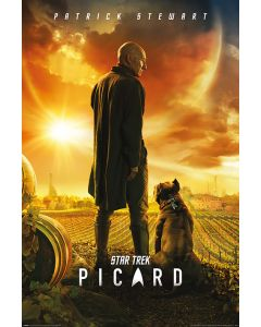 Star Trek Picard Number One Poster 61x91.5cm