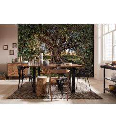 Olive tree 8-part Wall Mural 368x254cm