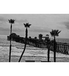 Oceanside Pier #8