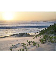 Pacific Ocean Seascape #5