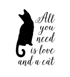 All you need is love and a cat - white