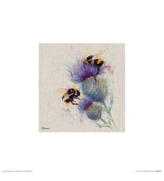 Bees on Thistle Art Print Jane Bannon 30x30cm