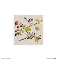 Birdie Gymnastics Art Print Jane Bannon 30x30cm