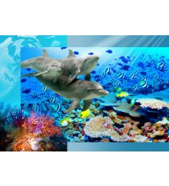 Dolphins 4-part Wall Mural 368x254cm