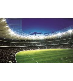 Football Stadium 2 1-part Vlies Wall Mural 152x104cm