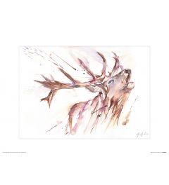 Deer Art Print Jennifer Rose 30x40cm