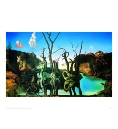 Dali Reflections Of Elephants Art print 60x80cm