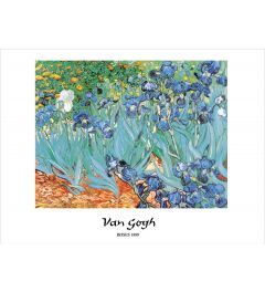Van Gogh Irises Art print 60x80cm