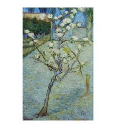 Van Gogh Pear Tree Blossoms Art print 60x80cm