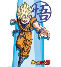 Dragon Ball Z SS Goku