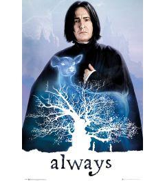 Harry Potter - Snape - Always