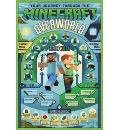 Minecraft Overworld Biome