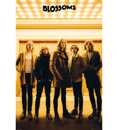Blossoms Band - Group