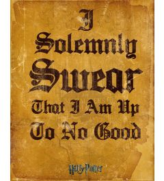 Harry Potter I Solomnly Swear Poster 40x50cm