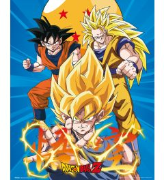 Dragon Ball Z - 3 Gokus