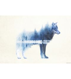 Forest Wolf Poster 61x91.5cm