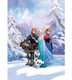 Frozen - Winter Land
