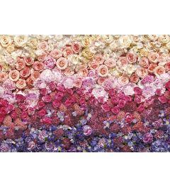 Roses - Intense