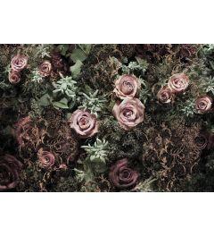 Roses - Velvet