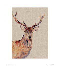 Montgomery Art Print Jane Bannon 30x40cm