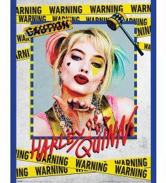 Birds Of Prey Harley Quinn Warning Poster 40x50cm