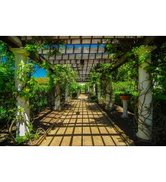 Garden Walkway 7-piece Photo wallpaper 350x260cm