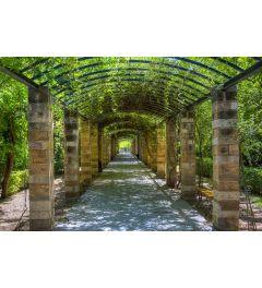 Garden of Athens 7-piece Photo wallpaper 350x260cm