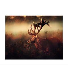 Deer In The Fog Art Print