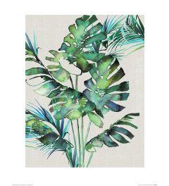 Summer Thornton Monstera Leaves Art Print 40x50cm
