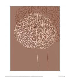 Ian Winstanley Stem Silhouette I Art Print 40x50cm
