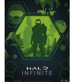 Halo Infinite Master Chief Hex Poster 40x50cm