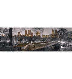 New York - Bow Bridge Central Park