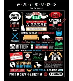Friends Poster Infographic 40x50cm