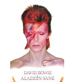 David Bowie Aladdin Sane Poster 61x91.5cm