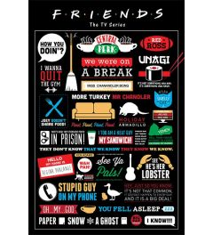 Friends Infographic Poster 61x91.5cm