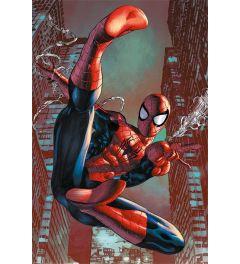 Spiderman - Web