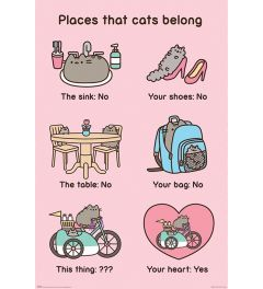Pusheen Places Cats Belong