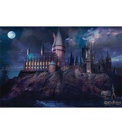 Harry Potter Poster Hogwarts 61x91.5cm