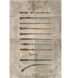 Harry Potter The Wand Chooses The Wizard Poster 61x91.5cm