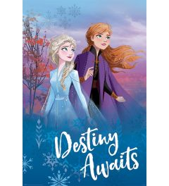 Frozen 2 Destiny Awaits Poster 61x91.5cm