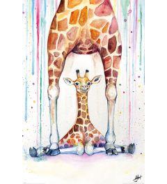Marc Allante Gorgeous Giraffes Poster 61x91.5cm