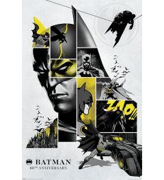 Batman 80th Anniversary Poster 61x91.5cm