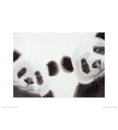 Two Giant Pandas Art Print Aimee Del Valle 30x40cm