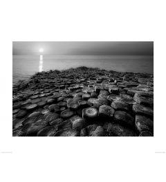 Columnar Sunset in Black and White Art Print Dennis Frates 60x80cm