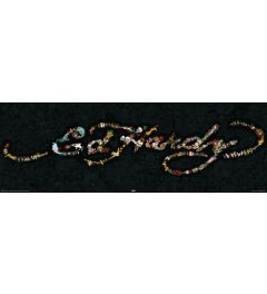 Ed Hardy - Handtekening