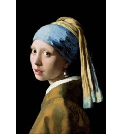 Girl with a Pearl Earring by Johannes Vermeer Poster 61x91.5cm