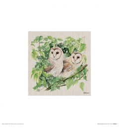 Two Owls Art Print Jane Bannon 30x30cm