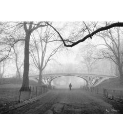 Gothic Bridge - Central Park - New York