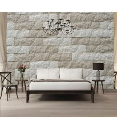 Yellow Stone Wall Wall Mural 4-parts 368x254cm